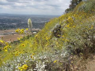 Garcia Trail