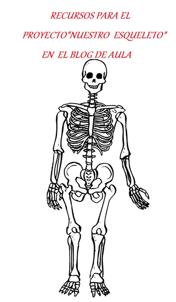 http://elrincondeinfantiljuancarlos1.blogspot.com.es/p/proyecto-nuestro-esqueleto.html