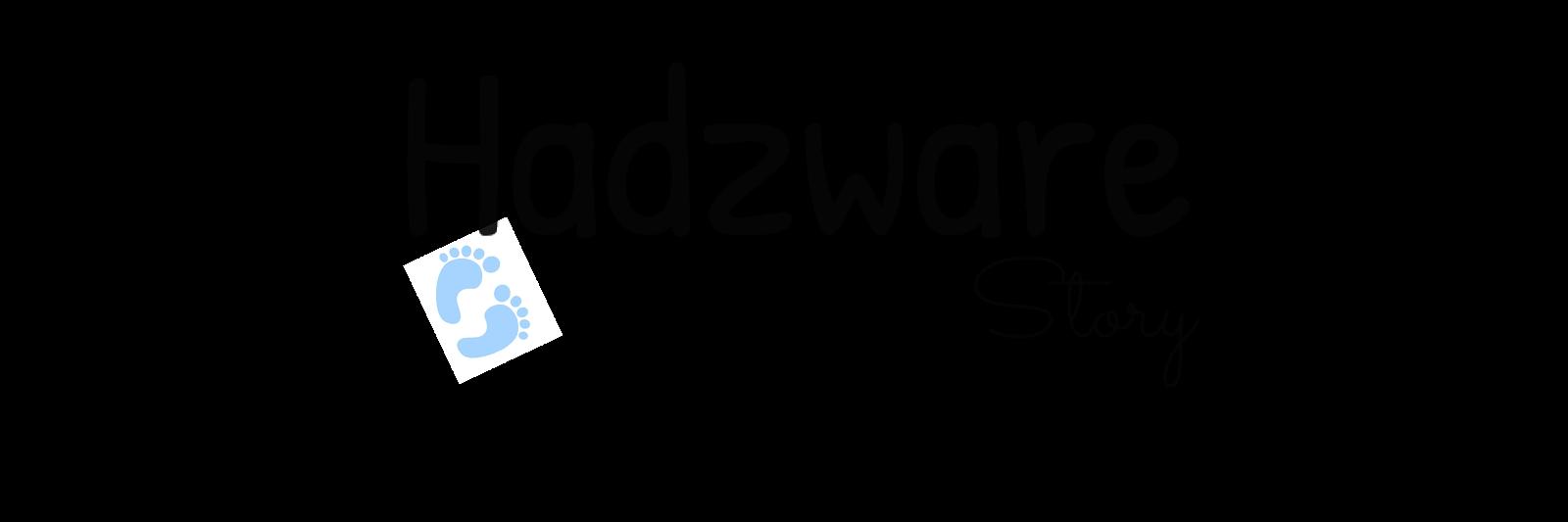 Hadzware Story