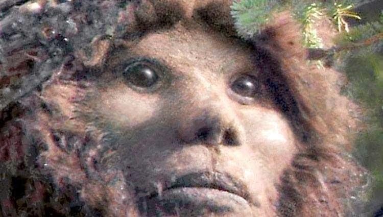 Best Found Footage Horror Movies