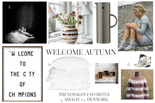Amalie loves Denmark Trendsales Favorites Autumn 2014