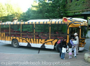 Everland Korea safari bus