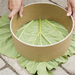 Baldosas originales para tu jard n ecoexperimentos for Baldosas para jardin