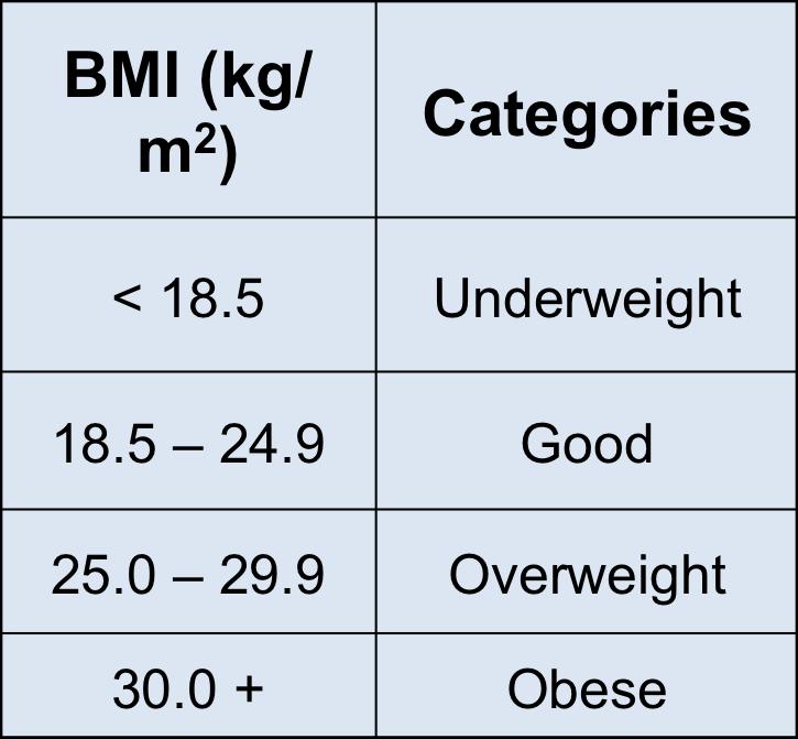 Molium: Healthy Weight Loss