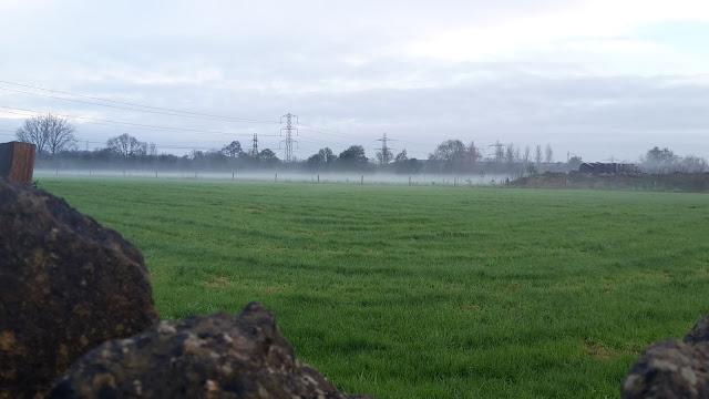 Project 366 2016  day 11 - Misty fields // 76sunflowers