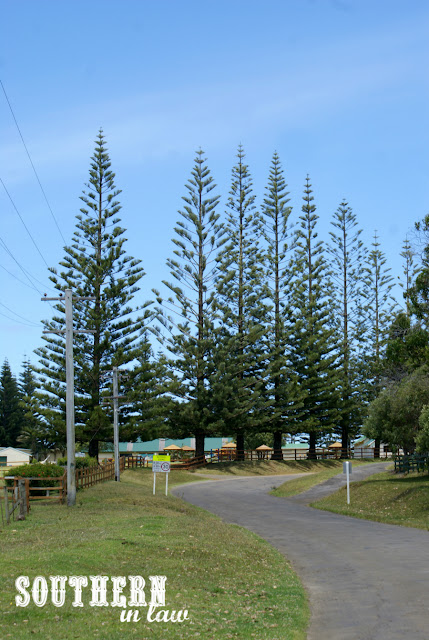 Norfolk Island School