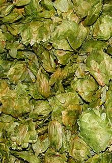 El jard n del l pulo el blog de cerveza ampliaci n de for El jardin del lupulo