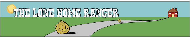 the lone home ranger reviews