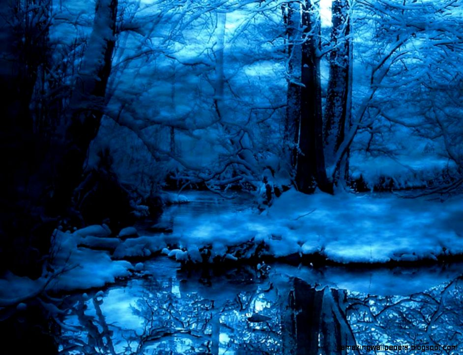 Snow Forest Wallpaper   WallpaperSafari