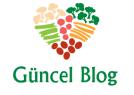 Son Dakika Güncel Blog