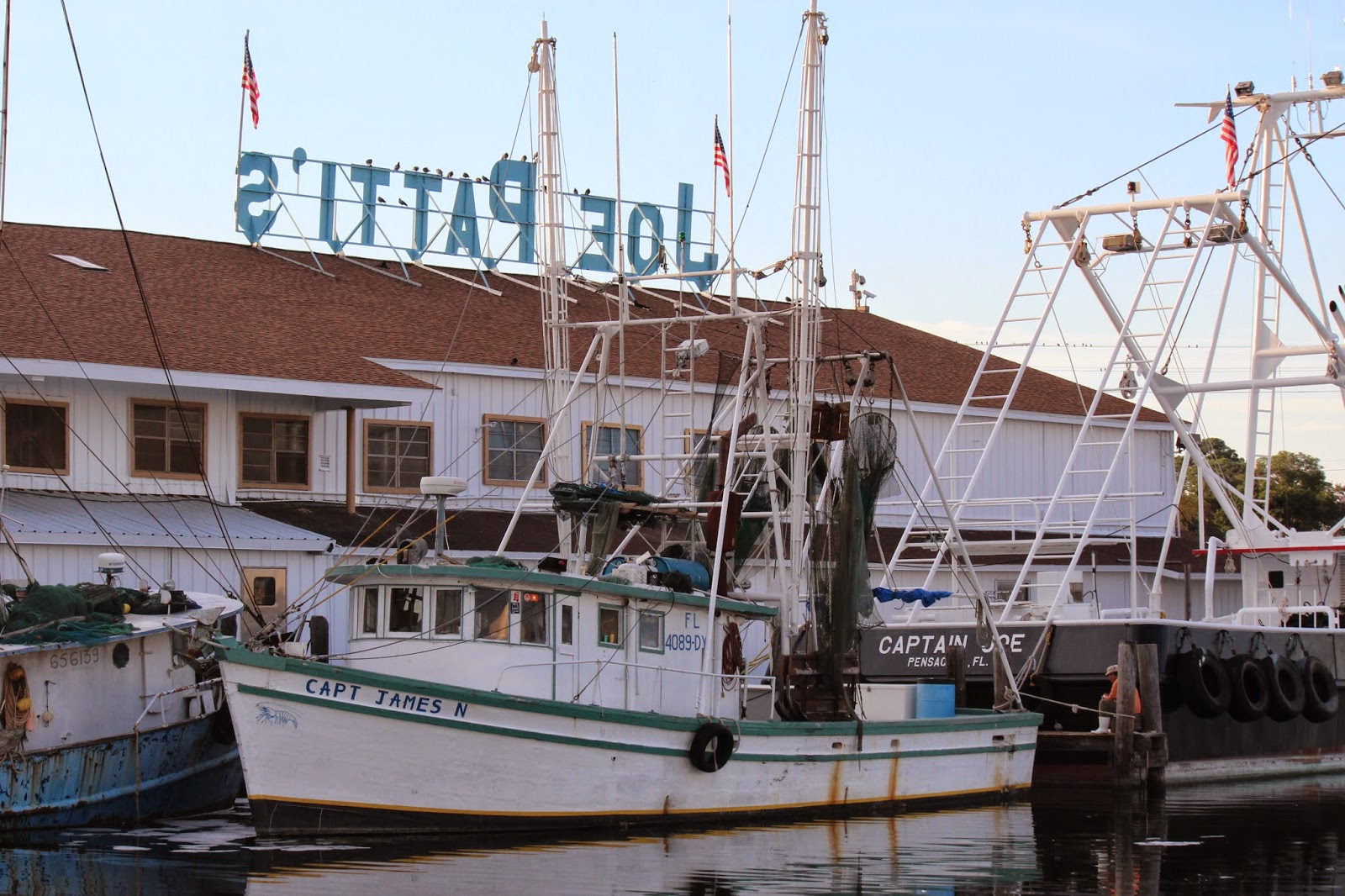 Love to live in pensacola florida joe patti 39 s world for Pensacola party boat fishing