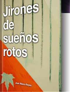eBook (ePub)