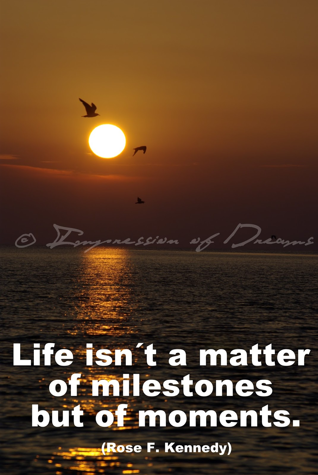 Life isn´t a matter of milestones but of moments