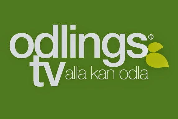 Odlings Tv