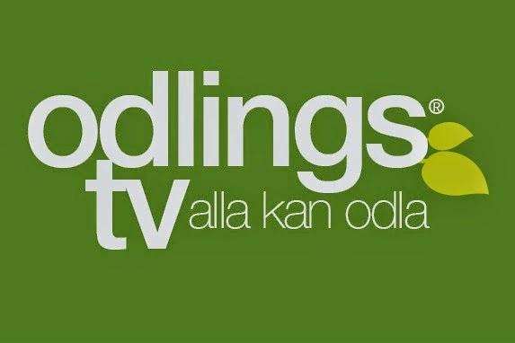Odlings Tv
