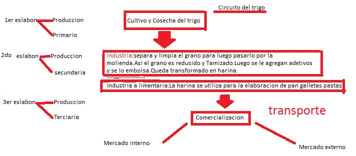 Circuito Productivo Del Trigo : Circuito productivo del trigo prezi