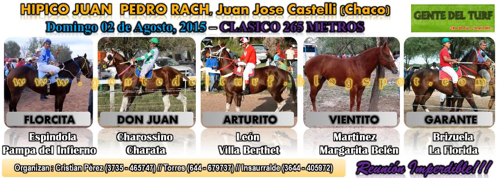 Castelli Mas Clasicos 02-08