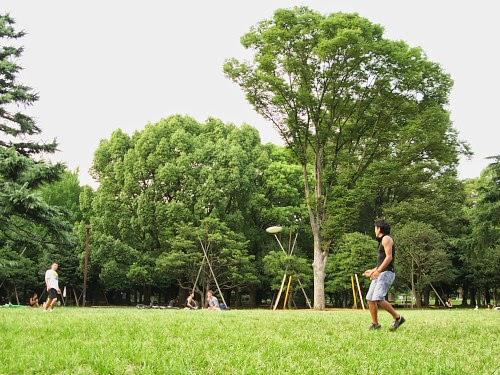 Yoyogi Park, Tokyo.
