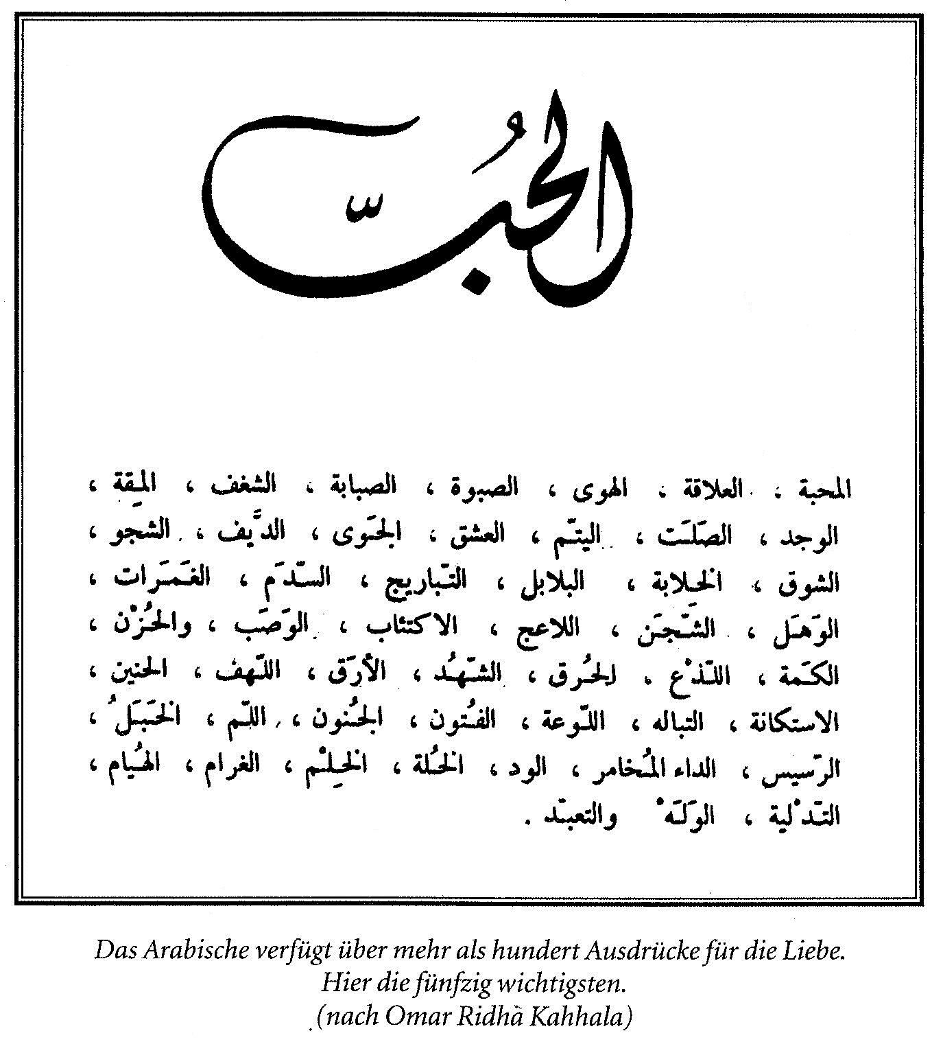 migrantenstadl: Liebe auf Arabisch