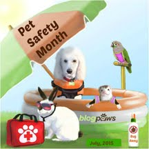July is Pet Safety Month