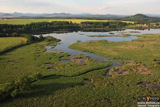 Novozámecký rybník