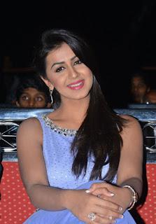 Nikki Galrani stills at Krishnashtami audio launch Stunning sleevless Light Purple gown