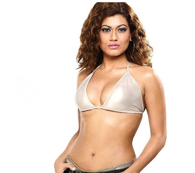 Payal Rohatgi sexy stills