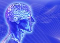 el poder del cerebro