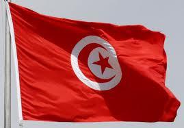 My flag ~ ~ العلم المُفدّى