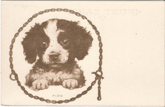 Fido vintage postcard