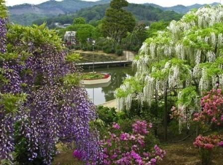 Free Beautiful Photos collection: Most Beautiful Waterfall ...