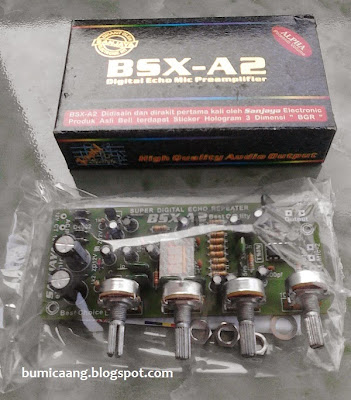 preamp_mic_echo_repeater_bsx_A2