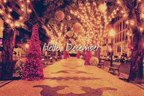 cute things: Hello December, Good Bye November (Imagens de Hello December)