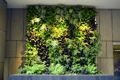 #4 Vertical Garden Ideas