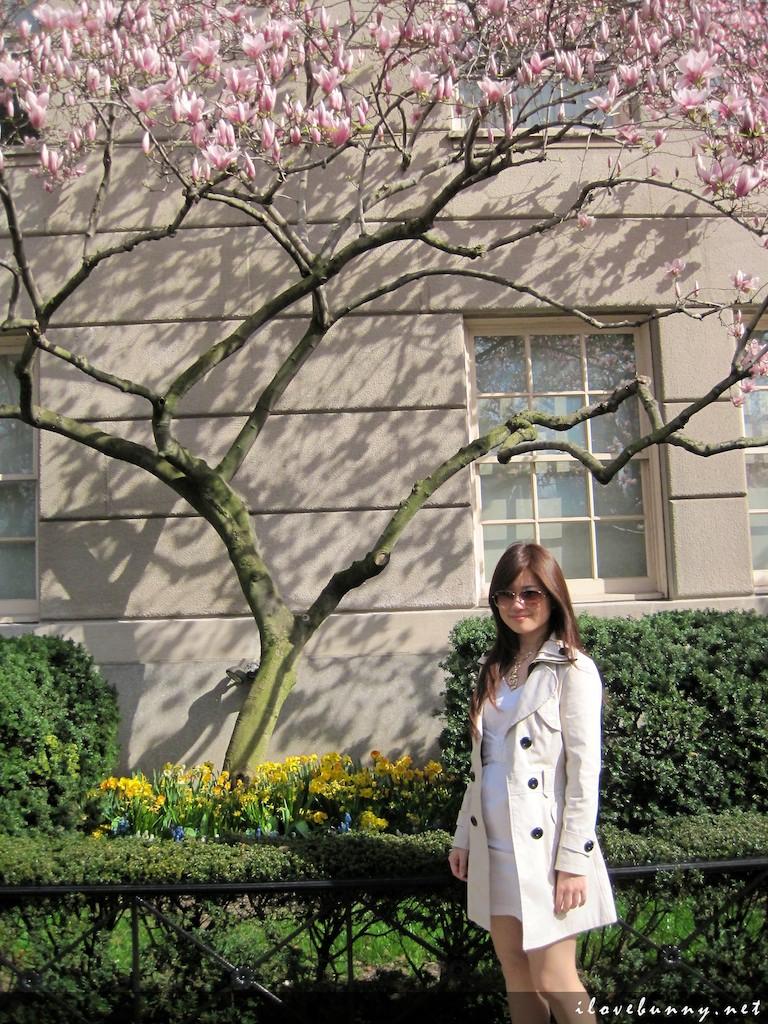 Honeyz Travel My New York City Pictorial I Love Bunny