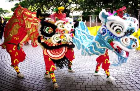 Chinese New Year: A Floral New Year | Flower Talk