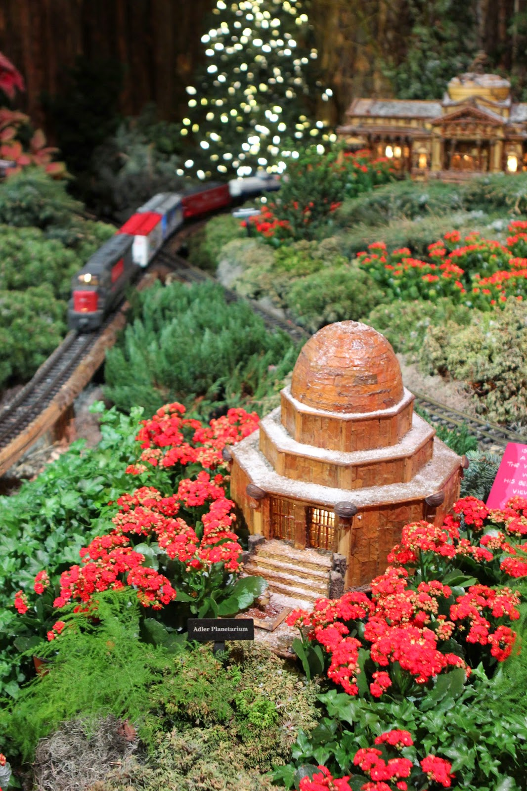 romancing the home chicago botanic gardens winter wonderland