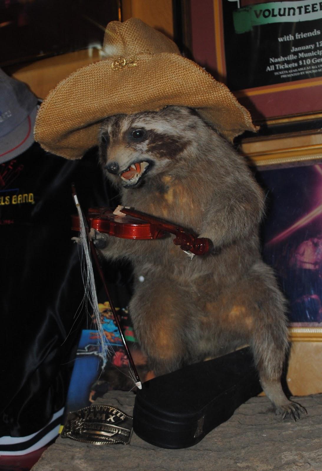 Raccoon Baculum Bone in Corked Vial EarthSeaWarrior