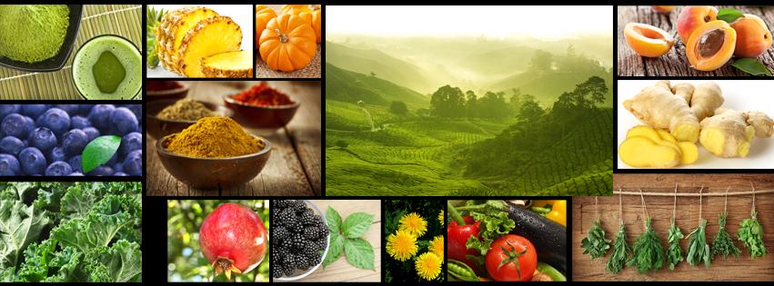Bio Life Care - produse organice de calitate
