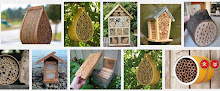 Know about Bee Conservancy and Bee Hotels?