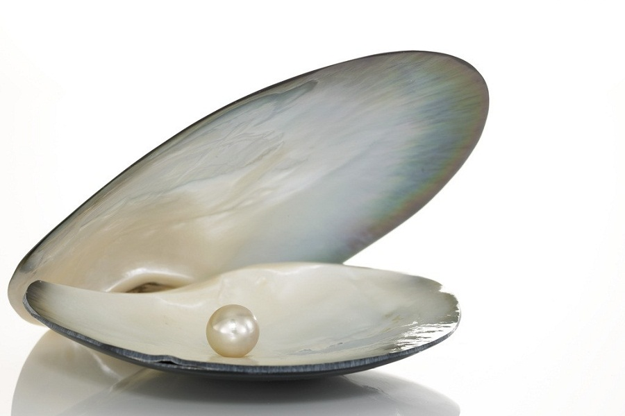 How do pearls form? - My Q/A Corner