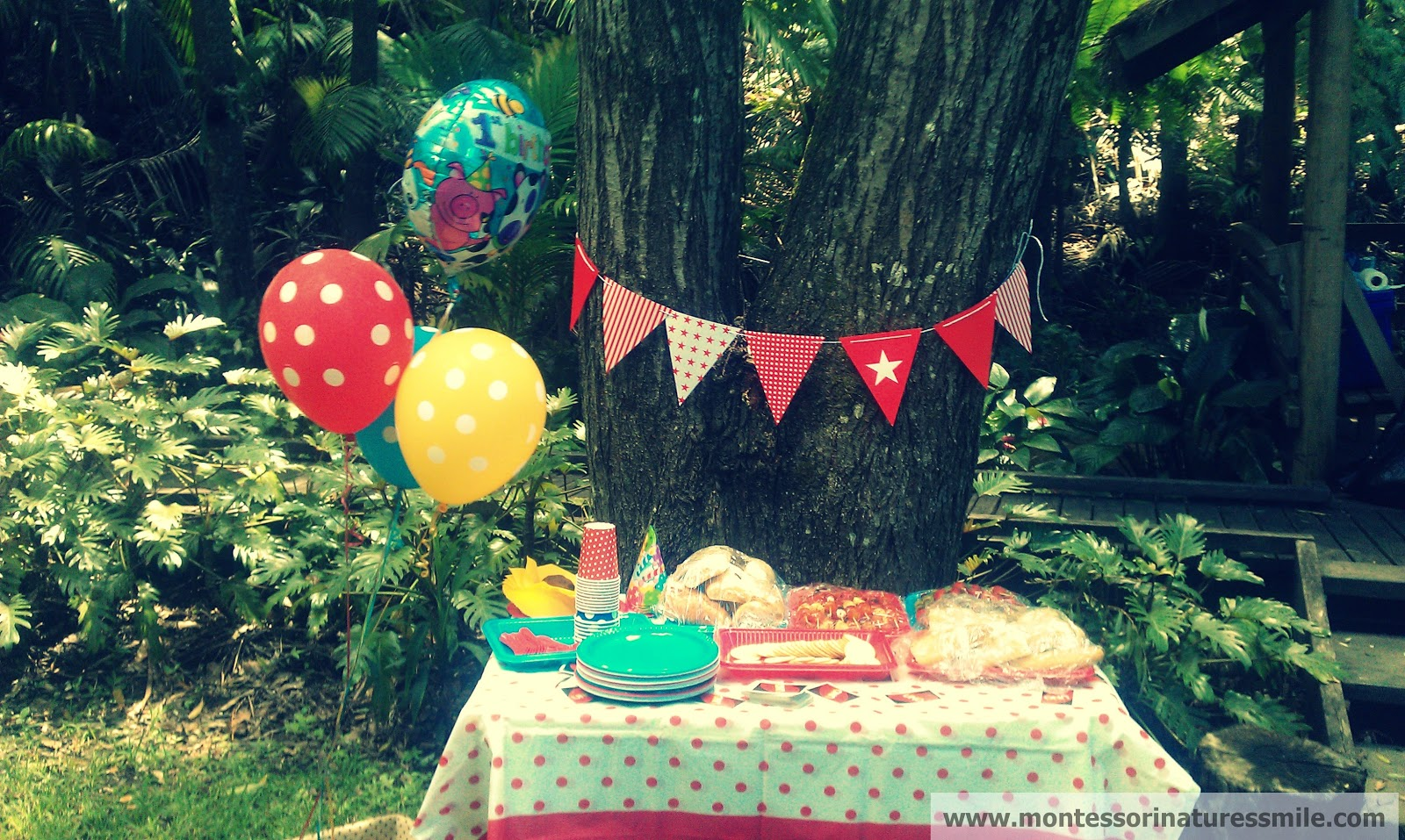 First Birthday Party Ideas - Montessori Nature