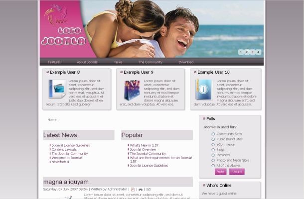 Free Pink Grey Flash Joomla 1.7 Theme Template