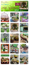 Make a Mini Garden @ HOMETALK