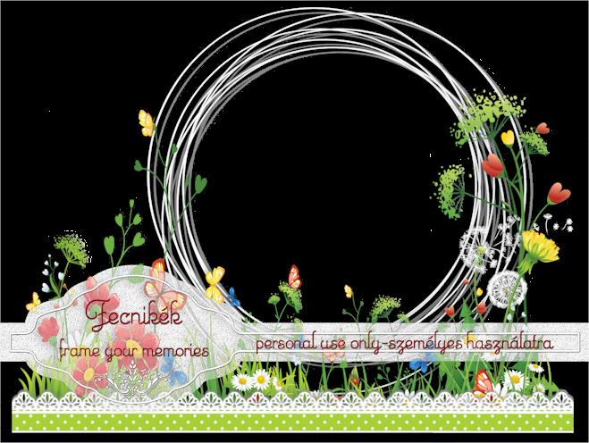 Fecnik 201 K Spring Cluster Frame