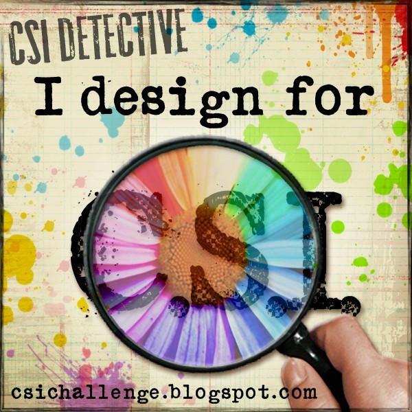 I am a Design Team member for CSI