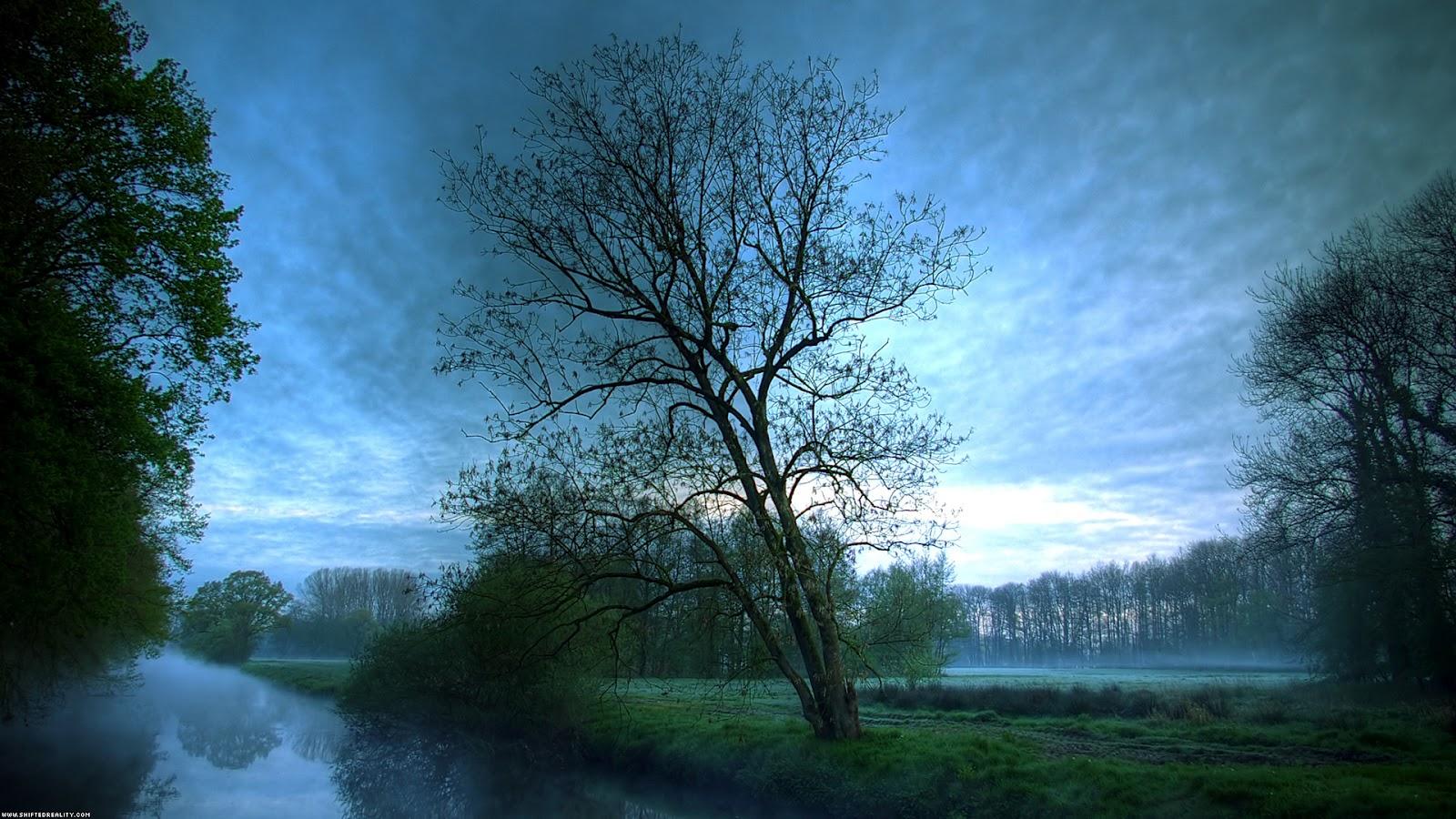 http://3.bp.blogspot.com/-WXU77KM4KaQ/T4hqxGbsjjI/AAAAAAAALKA/XZJe96yTRPM/s1600/25+Fundos+Natureza+HD+3dfoto3d.blogspot.com.br.jpg