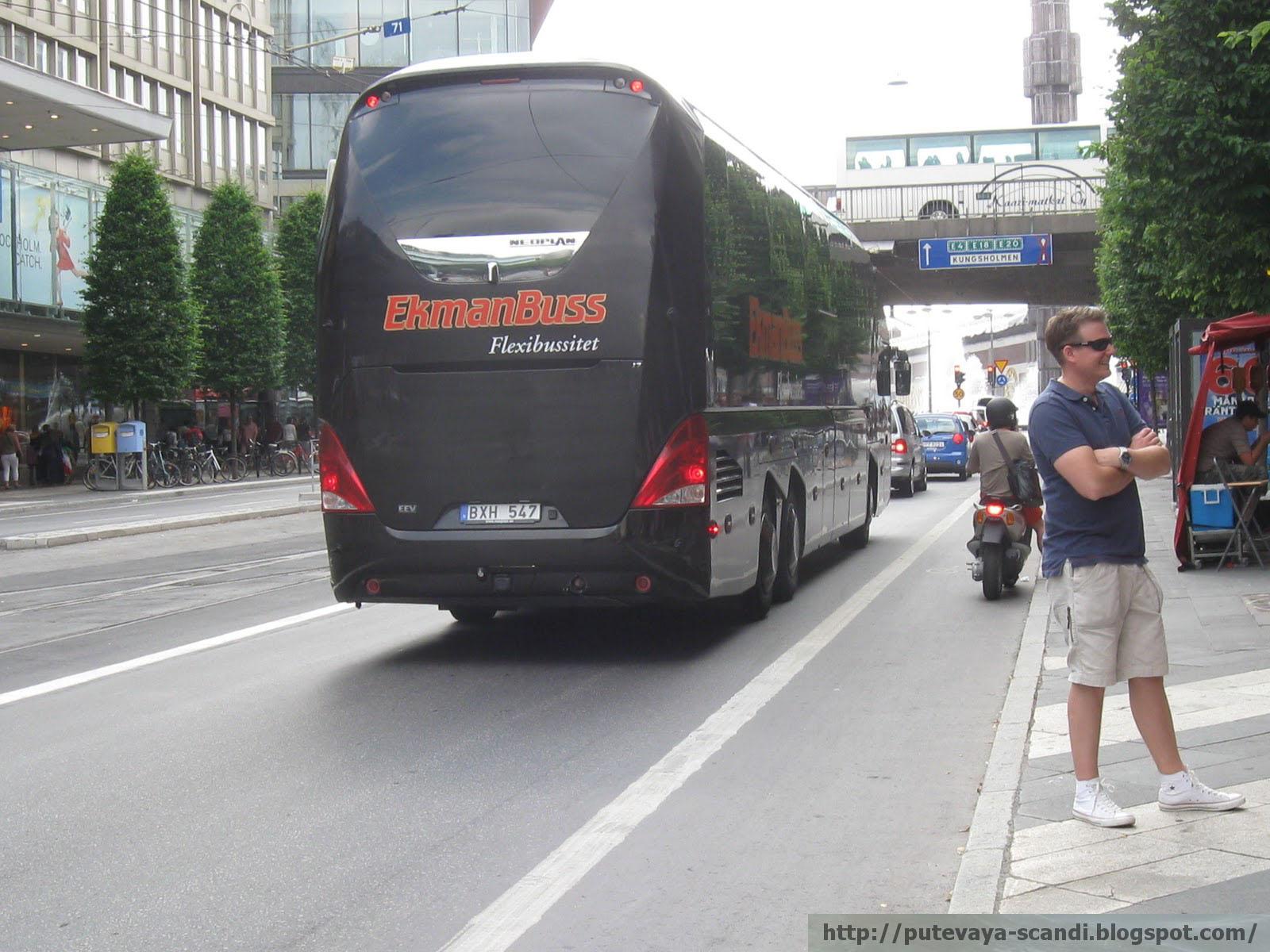 солидный bus