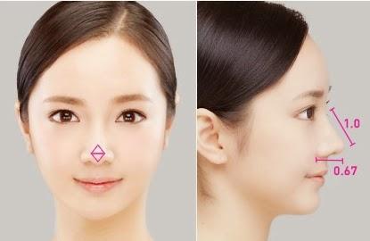 Point operasi plastik hidung di Wonjin