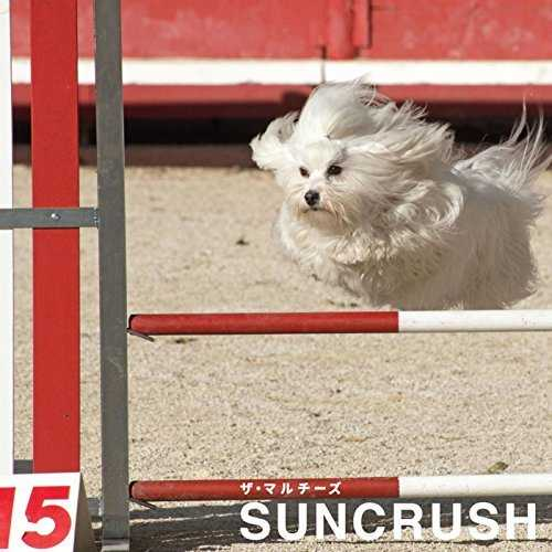 [Album] ザ・マルチーズ – SUNCRUSH (2015.11.25/MP3/RAR)